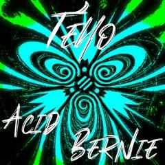 Téyo - Acid Bernie