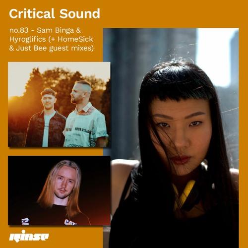 Critical Sound no.83 - Sam Binga & Hyroglifics (w/ HomeSick & Just Bee guest mix) | Rinse | 07.10.20