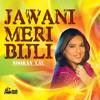 Download Jhoot Nahin Boldi Mp3