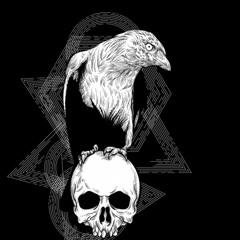 corbeau noir inedit 💥