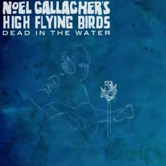 Noel Gallagher's High Flying Birds - Dead In The Water (Lo-Fi Cover)