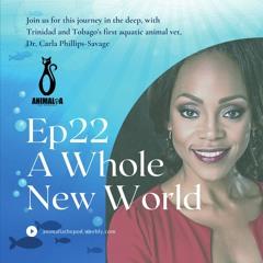ANIMALIA 22 - A Whole New World - 23Apr21