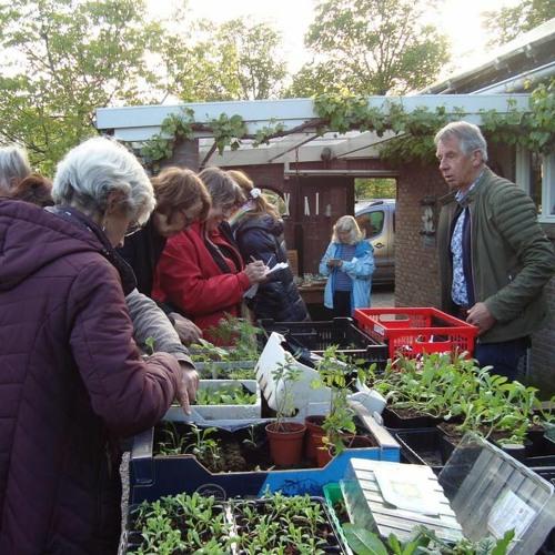 Podcast 5 Tuinvereniging Groei & Bloei over het vergroenen van je tuin