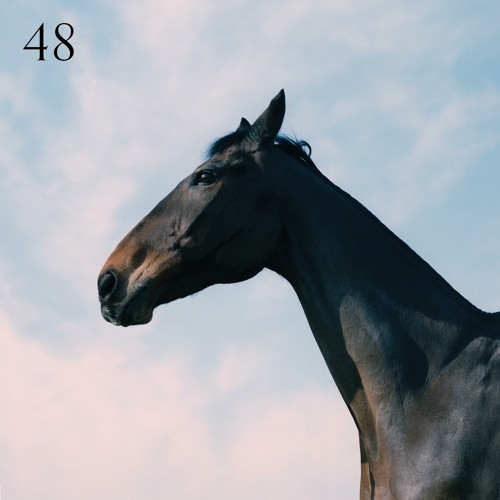 48 (feat. Jay Prince)