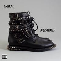 DIGITAL - Big Stepper