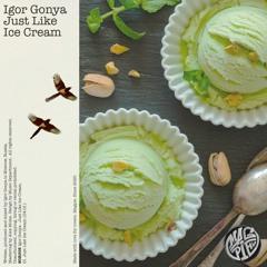 PREMIERE: Igor Gonya - Just Like Ice Cream [Magpie]