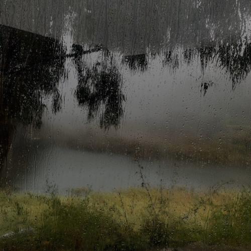 عبارات عن المطر موضوع