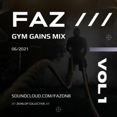 1 Hour Gym Gains Mix [4 Decks]