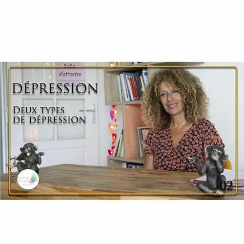 02 Dépression - Deux types de dépression