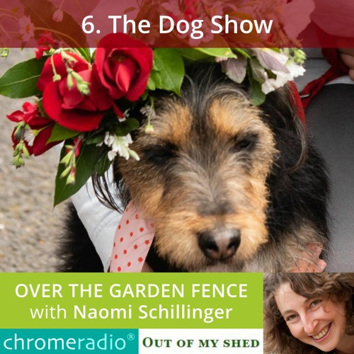 OVER THE GARDEN FENCE 6 | The Dog Show