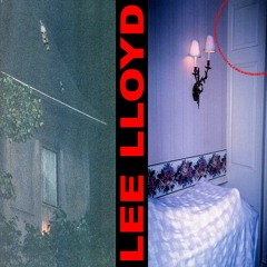 Lee Lloyd - MEETINGTOTALFREEDOM [blinx002] (snippets)
