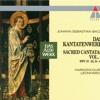 """Bach, JS : Cantata No.37 Wer da gläubet und getauft wird BWV37 : V Aria - """"Der Glaube schafft der Seele Flügel"""" [Bass]"""