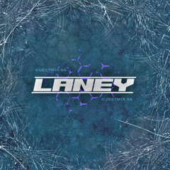 GUESTMIX 04 - LANEY