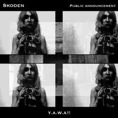 Skoden - Take The Reins