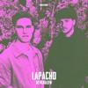 NEVERGLOW - Lapacho
