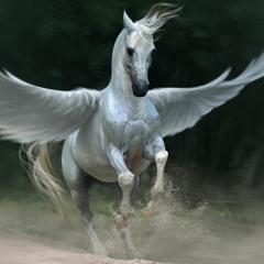Airwalker - Pegasus (Original Mix) (WIP02)