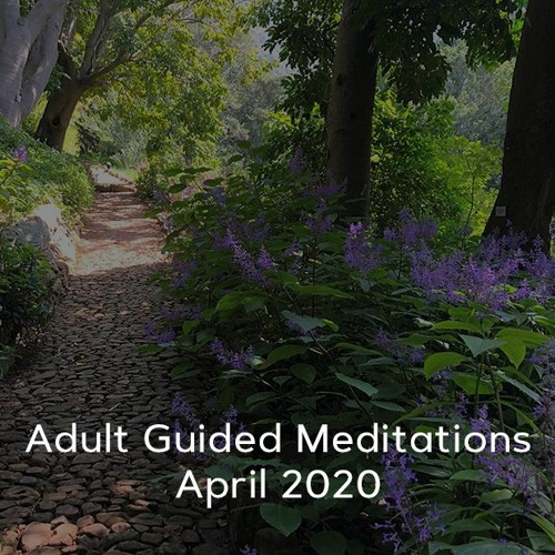 Adult Meditations - April 2020