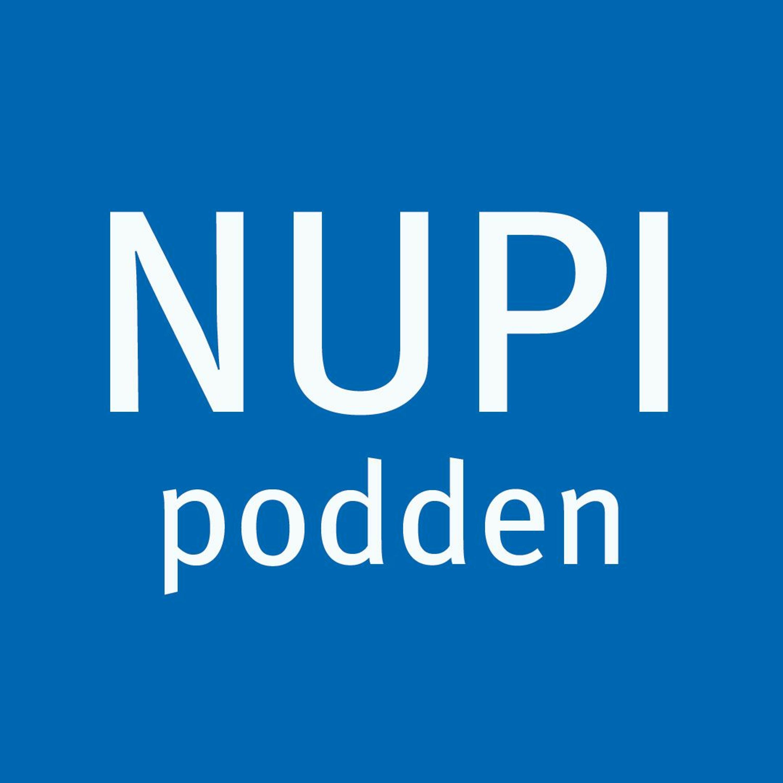 NUPI-podden #23: Hva mener norske velgere om utenrikspolitikk?