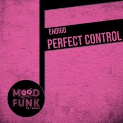 Endigo - PERFECT CONTROL // MFR261