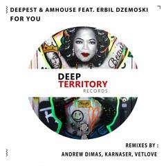 Deepest, AMHouse Feat. Erbil Dzemoski - For You (KARNASER Remix)