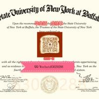 (UB毕业证文凭)制作QQ/Wechat:830 292 88美国纽约布法罗大学UB毕业证美国大学UB毕业证办理UB本科文凭证书 办UB学历学位认证#留服认证#