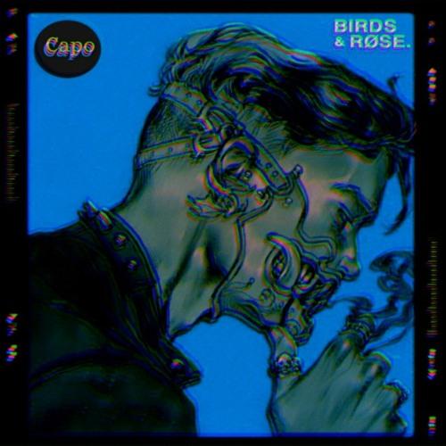 Capo (feat. røse.) (prod. LethalNeedle)