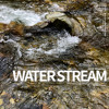 Rocks and Trees and Water (Team Malibu)