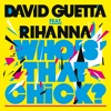 Who's That Chick ? (feat. Rihanna) (Instrumental)