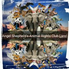 03. ANGEL SHEPHERDS ANIMAL RIGHTS CLUB LAND_VEGAMOR