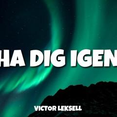 Victor Leksell - Ha Dig Igen (Mårten Remix)