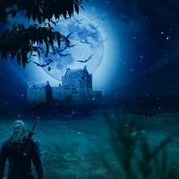 Witcher Crow