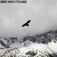 Birds Have Feelings