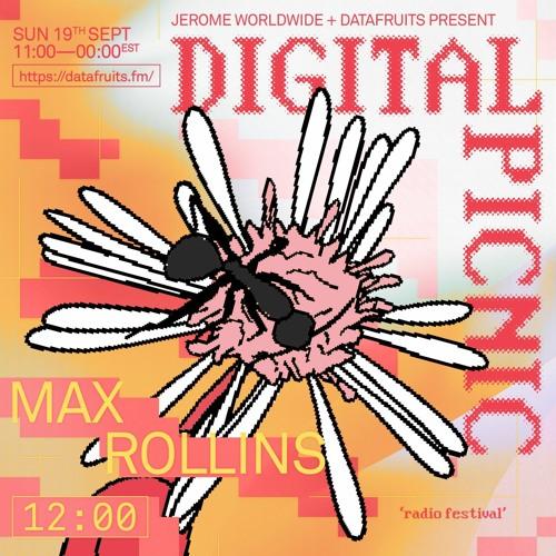 JEROME WORLDWIDE DIGITAL PICNIC - MAX ROLLINS