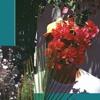 Ganther - Plant's Talk (Mix)