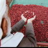 Download رائعة علي بن علي الآنسي   الحُب والبُن  Mp3