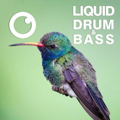 Liquid Drum and Bass Sessions  #45 [June 2021]