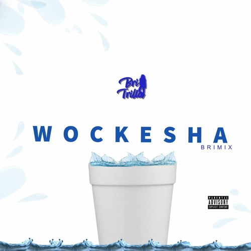 MoneyBagg Yo Wockesha Remix