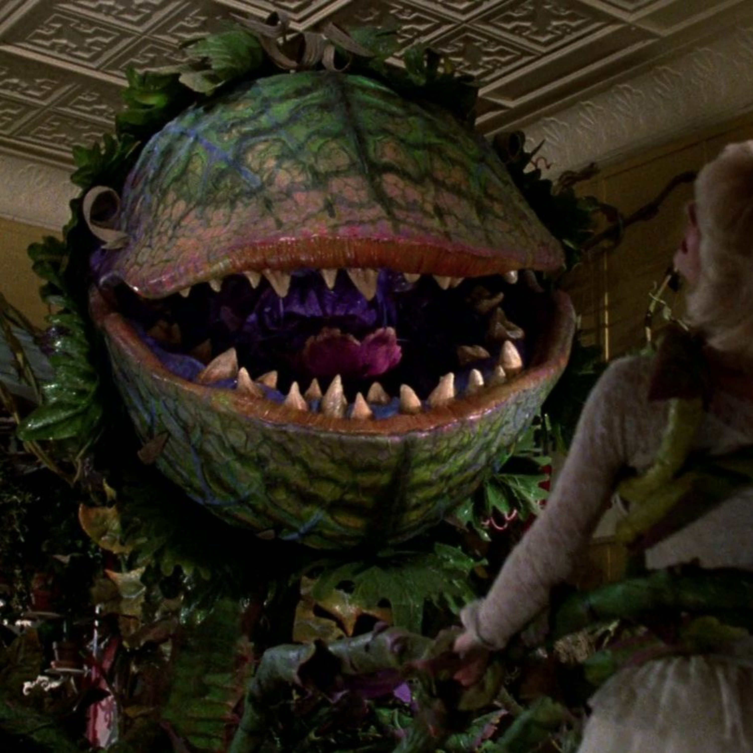 Ep53 - Little Shop of Horrors