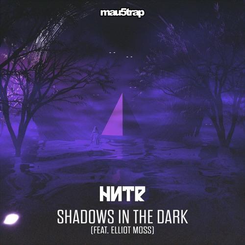 HNTR - Shadows In The Dark (feat. Elliot Moss)