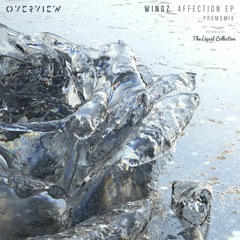 Wingz - Affection EP Promo Mix (Recorded By The Liquid Collective)