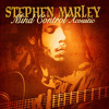 Iron Bars (Acoustic Version) [feat. Julian Marley & Spragga Benz]