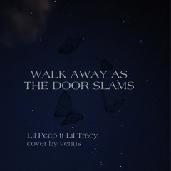 Walk Away As The Door Slams Lil Peep ft Lil Tracy (cover)