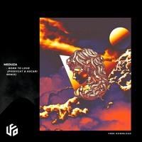 Meduza - Born To Love (Pvssycat & Ascari Remix)