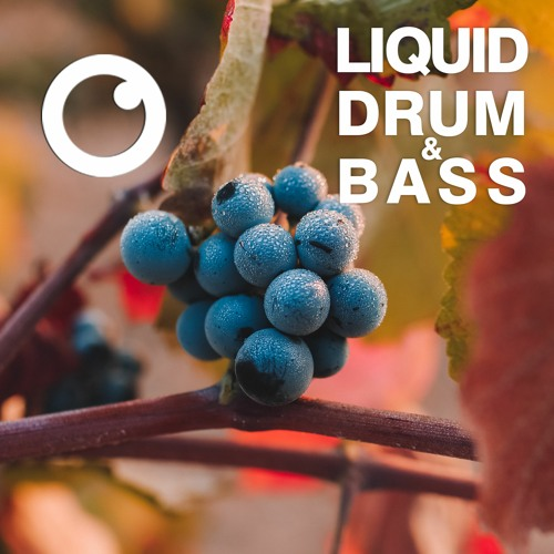Download Liquid Drum and Bass Sessions 42 / mix by Dreazz (April 2021) mp3