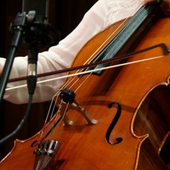 Dmitri Shostakovich Cello Sonata I movement (Allegro non troppo)