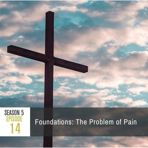Season 5 Episode 14 - Foundations: The Problem of Pain