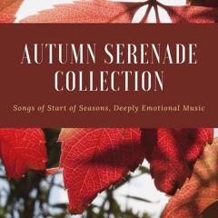 Autumn Serenade Collection