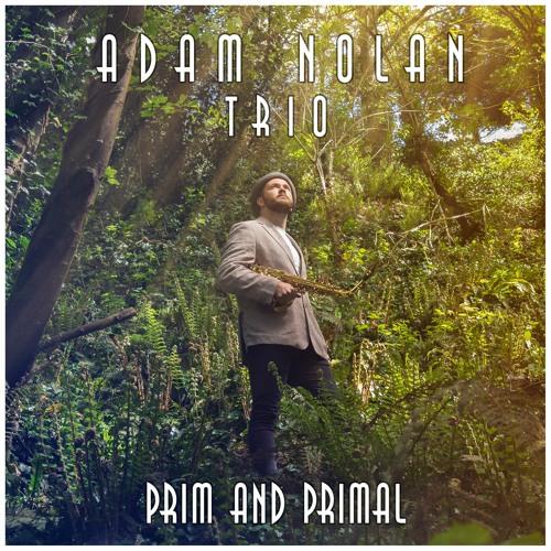 Adam Nolan Trio - Prim and Primal