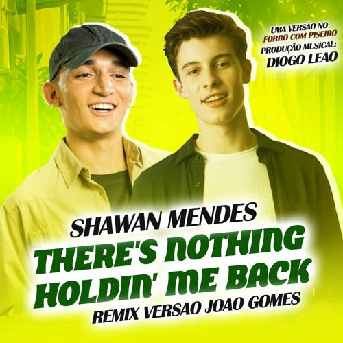 SHAWN MENDES - THERES NOTHING HOLDING ME BACK (REMIX - VERSÃO FORRÓ)