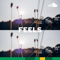 Emotional Indie: Feels
